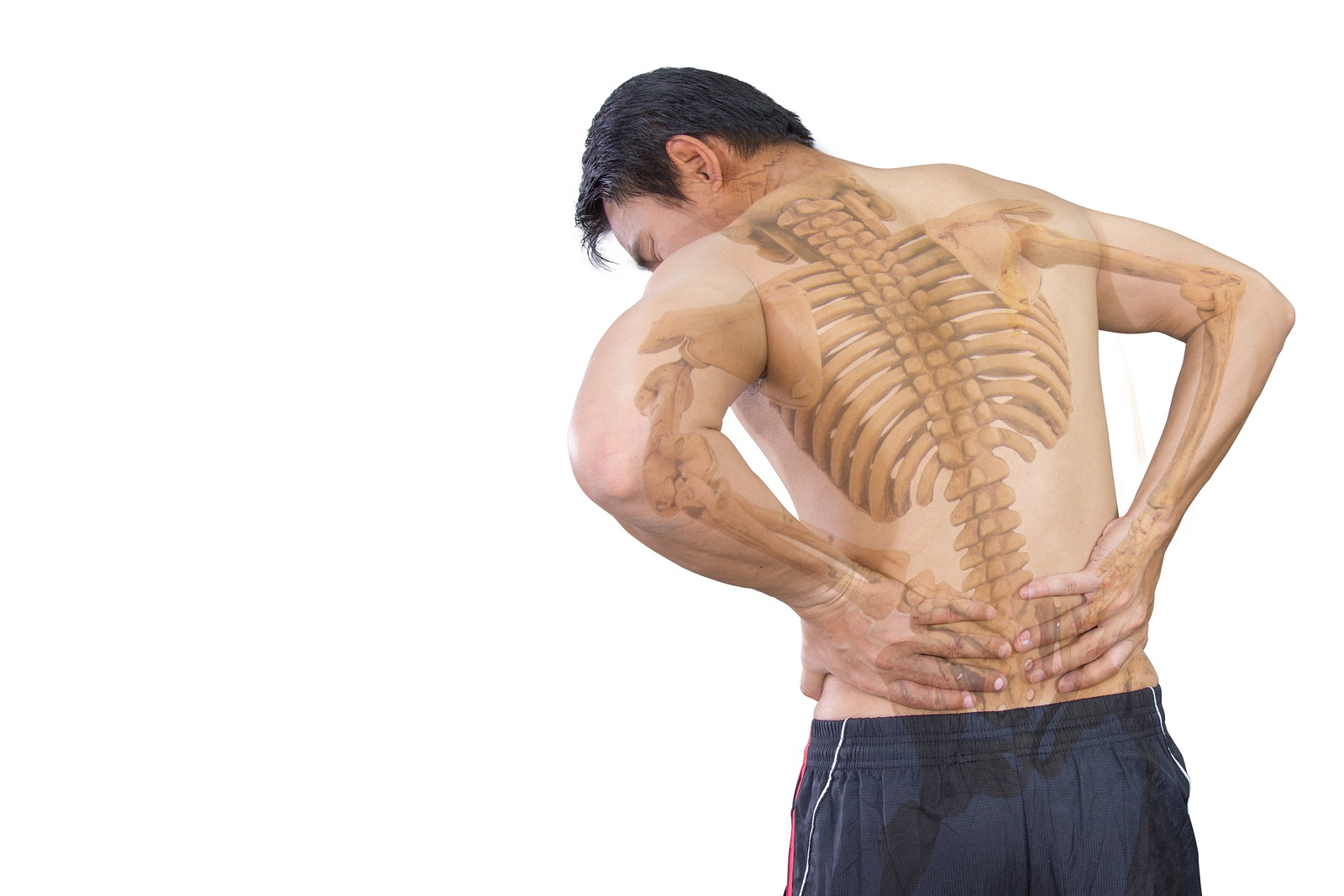 Low Back Pain - An online course for physical therapists / physiotherapists