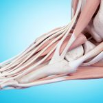 online foot and ankle course for physiotherapy and physical therapy