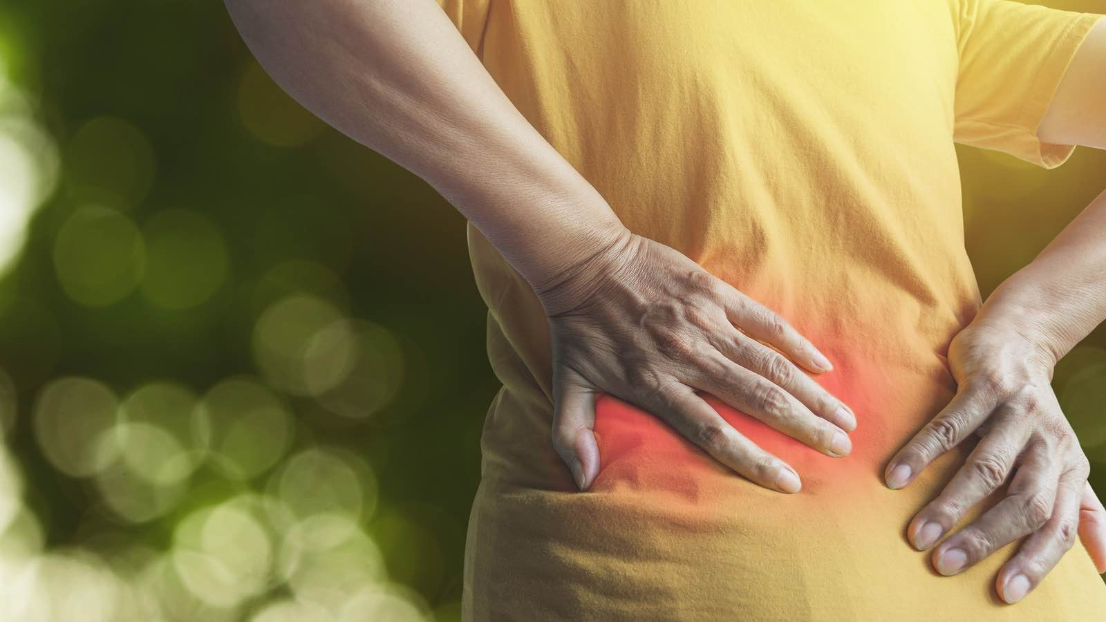 Low Back Pain Assessment and Prognosis - Learn to predict outcomes when treating low back pain