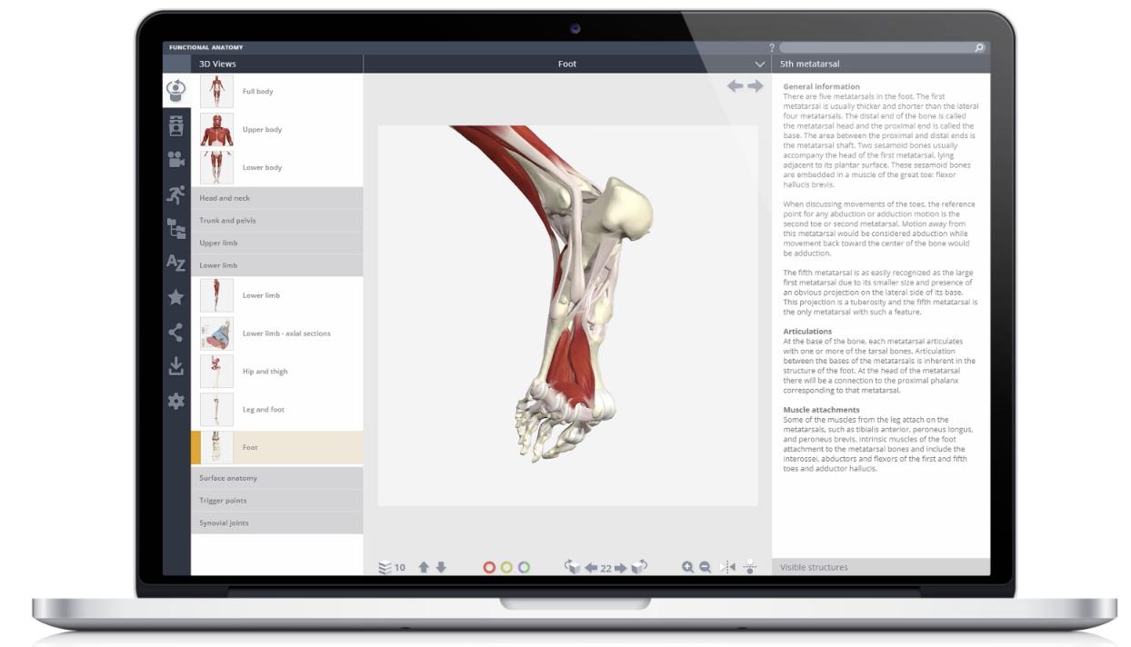 online anatomy