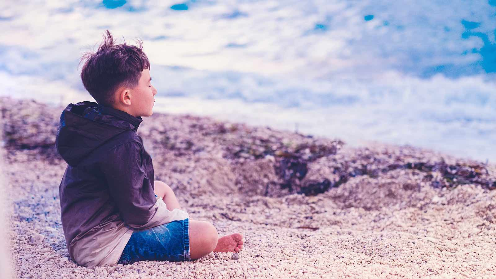 Introduction to Mindfulness for Children : Empowering kids to notice and regulate their inner and outer worlds